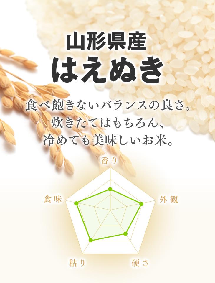 山形県産はえぬき | 食べ飽きないバランスの良さ。炊きたてはもちろん、冷めても美味しいお米。