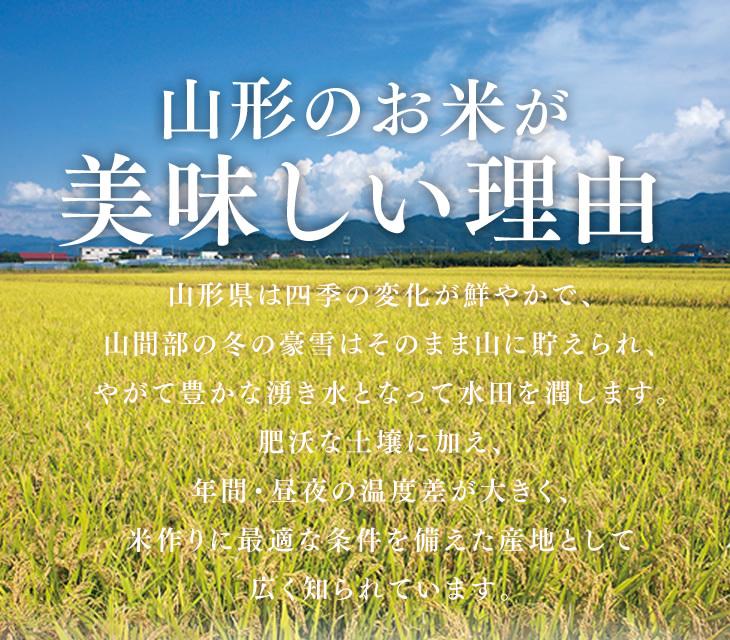 山形のお米が美味しい理由:山形県は四季の変化が鮮やかで、山間部の冬の豪雪はそのまま山に貯えられ、やがて豊かな湧き水となって水田を潤します。肥沃な土壌に加え、年間・昼夜の温度差が大きく、米作りに最適な条件を備えた産地として広く知られています。