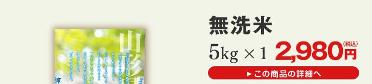 山形県産つや姫無洗米5kg×1
