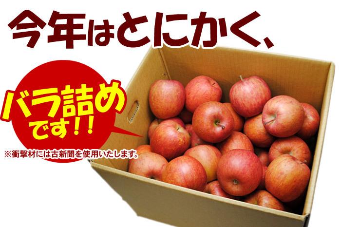 今年リンゴはたっぷりバラ詰め!サンふじ