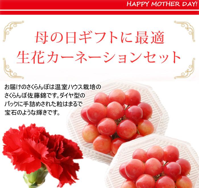 母の日ギフト!さくらんぼ佐藤錦(100g×2)Mサイズ