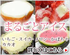 まるごとフルーツアイス