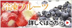 フルーツアイス