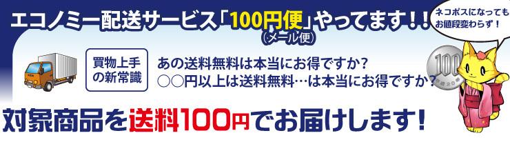 対象商品を送料100円でお届けします!