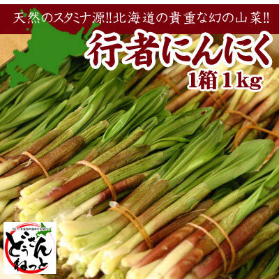 にんにく 行者 行者にんにく 発祥の店から産直通販 山菜屋.com