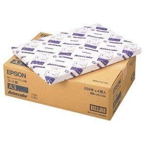 今年も話題の 【キャッシュレス5%還元】EPSON A3 カラーレーザープリンター用コート紙 A3 1箱(1000枚:250枚×4冊), ペットベリー:1d6e8fa1 --- 5613dcaibao.eu.org