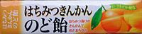 ★まとめ買い★ ノーベル製菓 はちみつきんかんのど飴 ×10個【イージャパンモール】