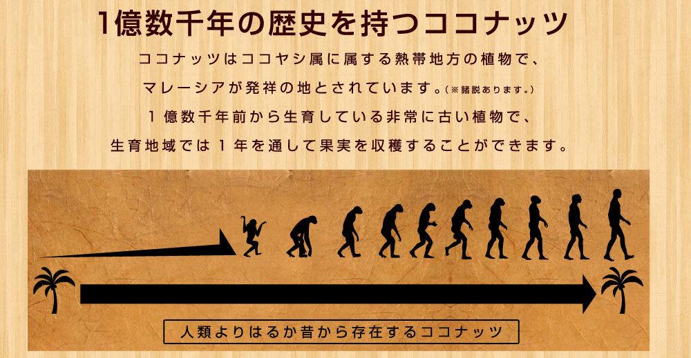 人類より長い歴史