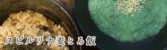 スピルリナ麦とろ飯