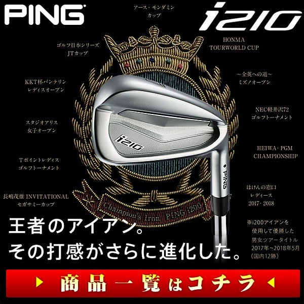 PING i210