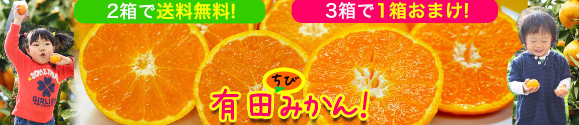 無添加あんぽ柿