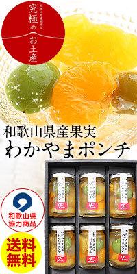 和歌山県協力商品!わかやまポンチセット