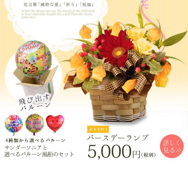 花言葉は「純粋な愛」「祈り」「祝福」9月の誕生花 サンダーソニア特集