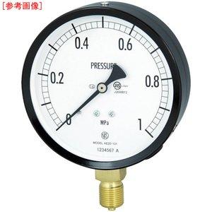 【公式】 長野計器 長野 普通形圧力計(A枠立形・φ100・G3/8B・0.0~4.00Mpa) 長野計器 AE201314.0MP【送料無料】長野 普通形圧力計(A枠立形・φ100・G3/8B・0.0~4.00Mpa), ギフト&グルメ北海道:f15a6599 --- pyme.pe