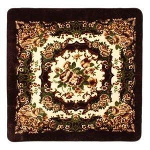 【楽天カード分割】 その他 花柄 ラグマット 床暖房対応 花柄/絨毯【230cm×330cm ブラウン】 長方形 長方形 ホットカーペット 床暖房対応 『リオ3』【】 ds-2113606【送料無料】花柄 ラグマット/絨毯【230cm×330cm ブラウン】 長方形 ホットカーペット 床暖房対応 『リオ3』【】 (ds2113606), DECOR Plus:e93c5a91 --- grabacontractor.com