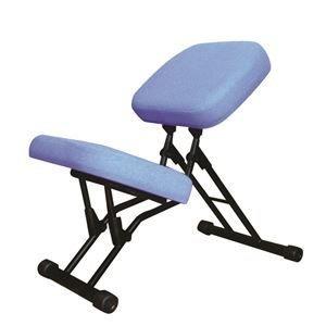 魅力的な価格 その他 学習椅子/ワークチェア 【ブルー×ブラック】 幅440mm 日本製 折り畳み スチールパイプ 【】 ds-2154281, コンタクトレンズギャラリー 1aad5330
