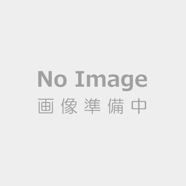 ダイソン v8 スリム フラ フィ プラス