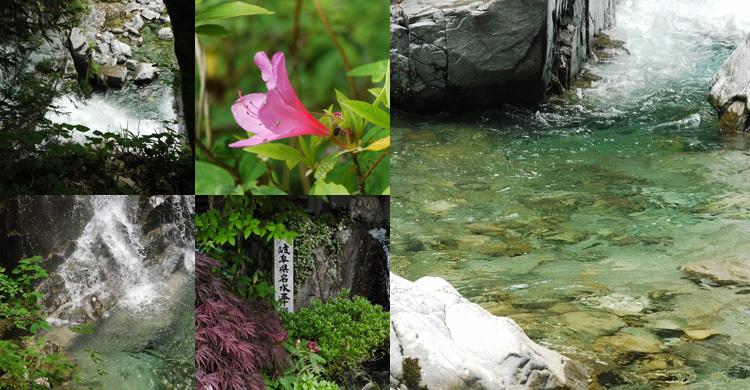 付知町の自然 写真 その2