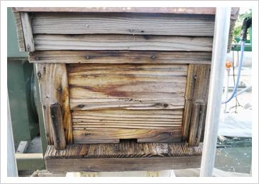 午前中には蜜蜂が蜂の巣から出てブンブン飛び回っています