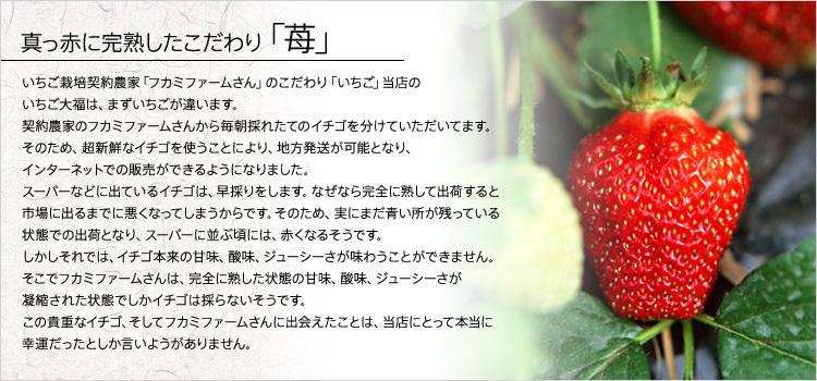 真っ赤に完熟したこだわり「苺」