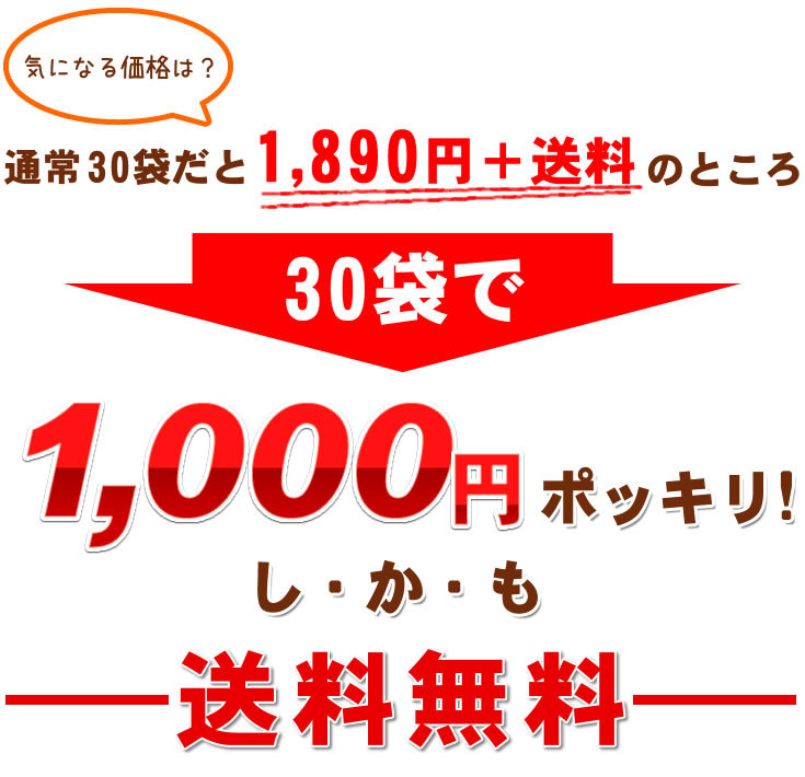 30袋で1000円ポッキリ!しかも送料無料!!