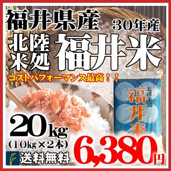 福井米20kg