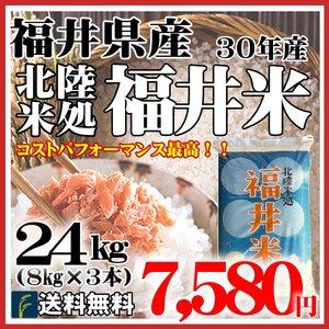 福井米24kg