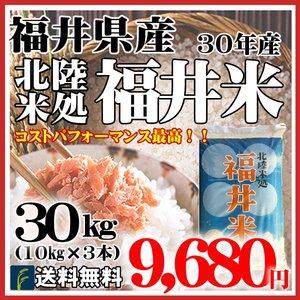 福井米30kg