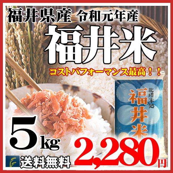福井米5kg