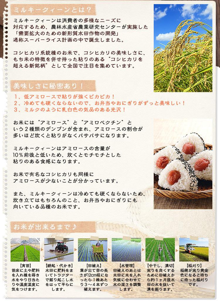 農林水産省 スーパーライス計画の中から開発されたお米