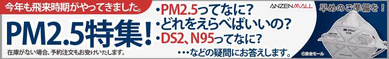 PM2.5特集!安全モールのオススメをご紹介!