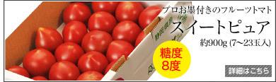ピュアトマト