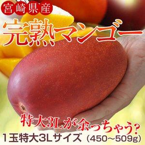 3Lマンゴー