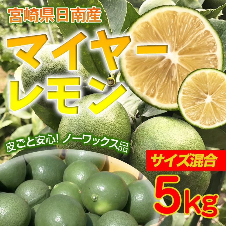 日南レモン