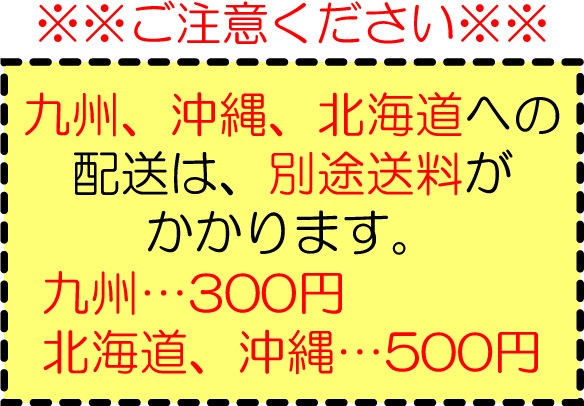 九州、北海道、沖縄 別途送料