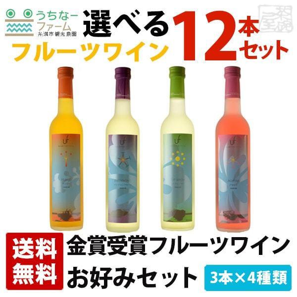 選べるフルーツワインセット 8度 500ml 12本セット