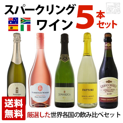 スパークリングワイン 世界各国飲み比べセット 5本セット