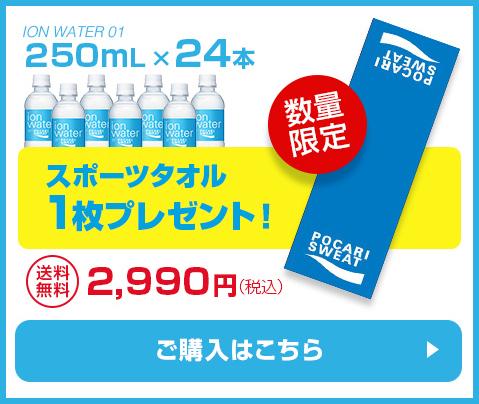 250ml 24本