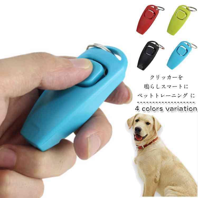 吠える しつけ 犬 【初めての甘噛のしつけ】しつけ教室に行かずに自宅でできる。犬の吠える・噛む・トイレをしつける方法