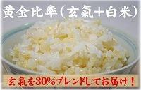 黄金比率(玄氣+白米)