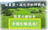 減農薬・減化学肥料栽培 佐賀の棚田米 手軽な無洗米