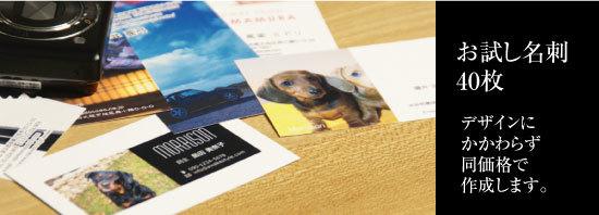 お試し名刺印刷 作成 格安価格、スピード納期でオリジナルを作成します。