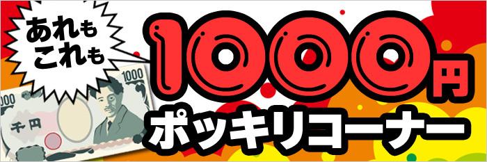 1000円ポッキリコーナー