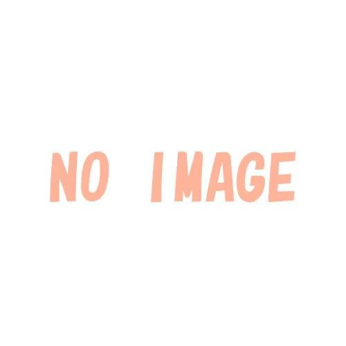 (予約)(仮)装動仮面ライダーゼロワンAI09コンプリートセット2020年8月発売予定に延期