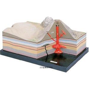 最安値級価格 火山模型, WILD PARTY:62cd9bf6 --- mashyaneh.org