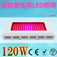 LED植物ライト
